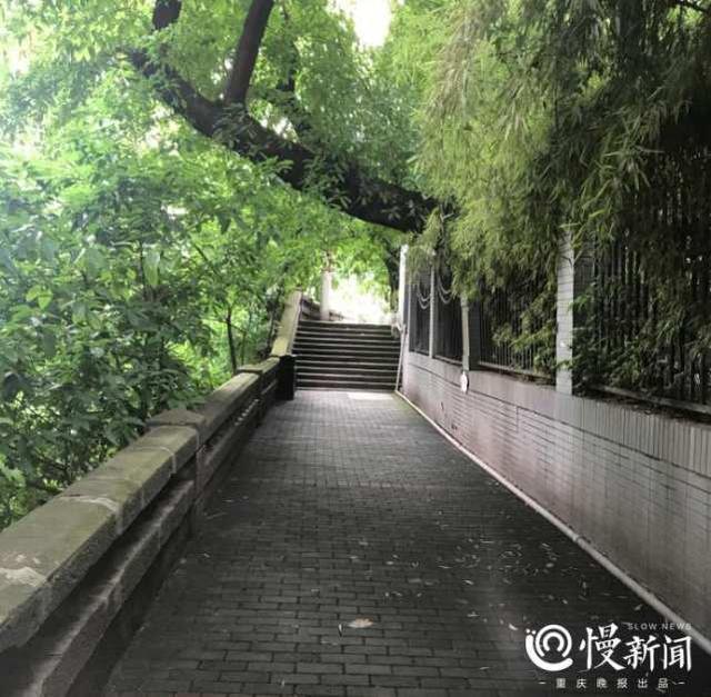 """藏身渝中的步道年底与你见面 百米悬空栈道带你打卡""""重庆味道"""""""